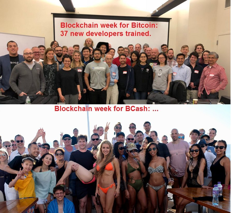 Bitcoin  Developers vs Bcash scammers
